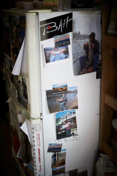 Fishing trip bait shop fridge