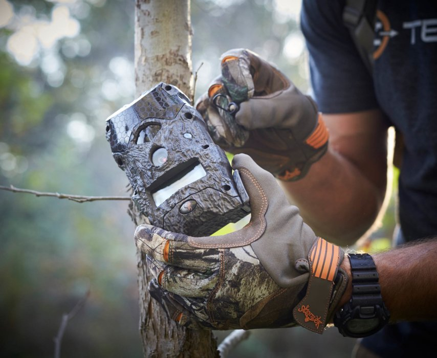 A hunter setting up a motion tracker on a tree