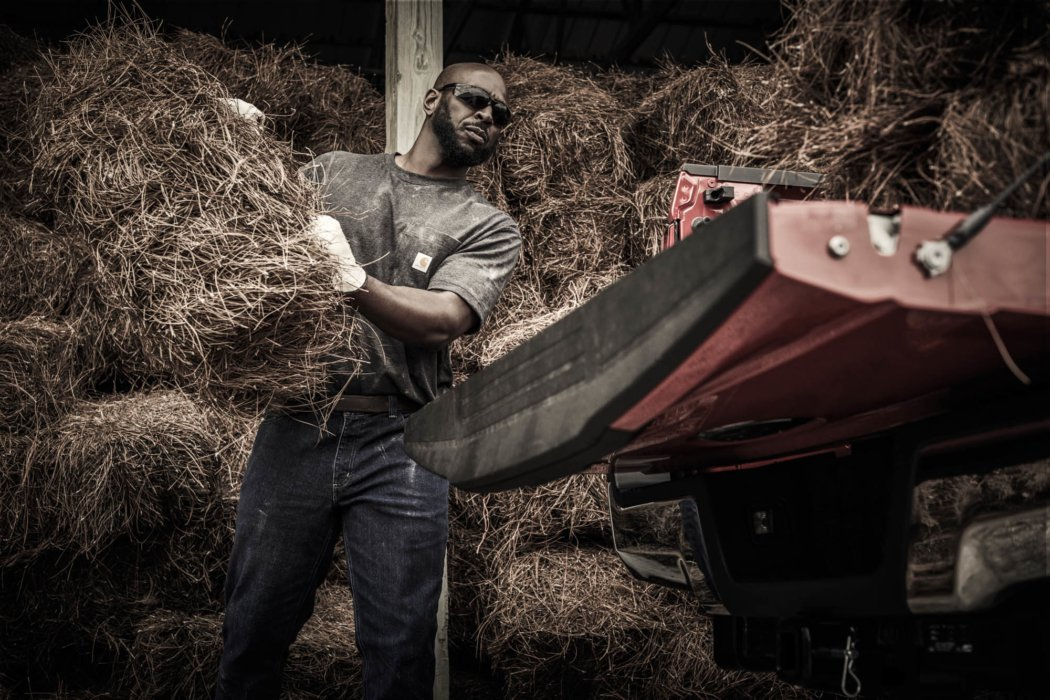 A man working with large amounts of hay going into a truck bed
