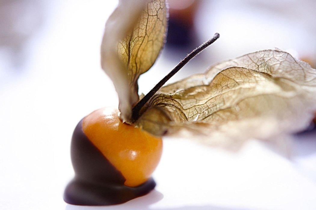 Orange fruit dipped in chocolate