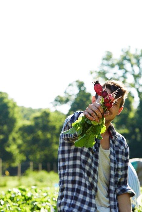 Man holding fresh radishes