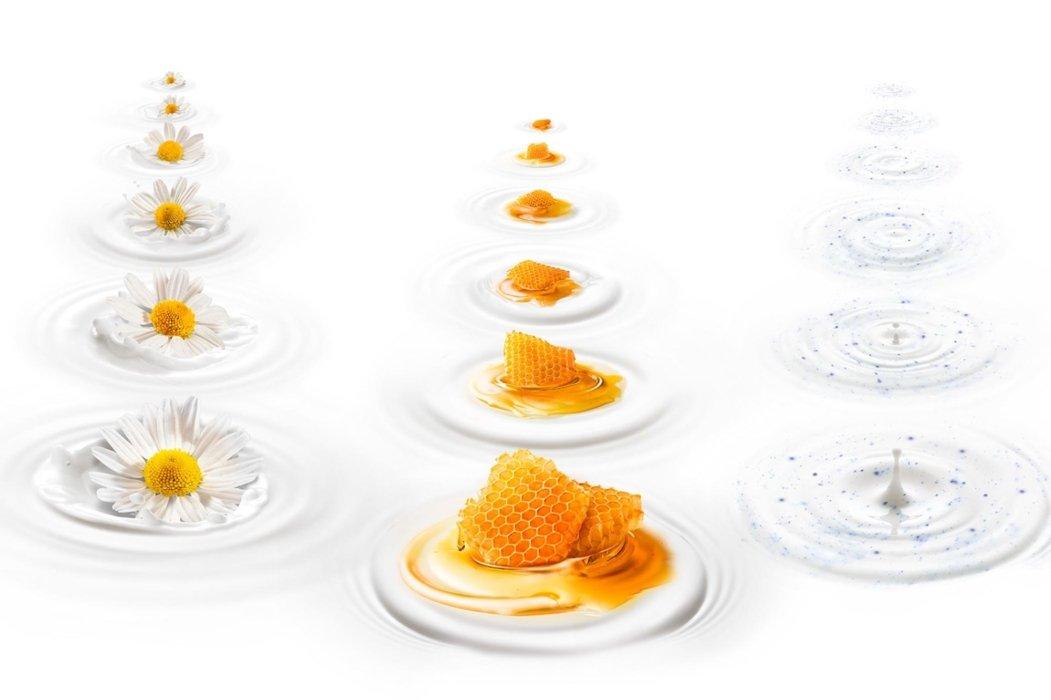 Flowers and orange splashing in white
