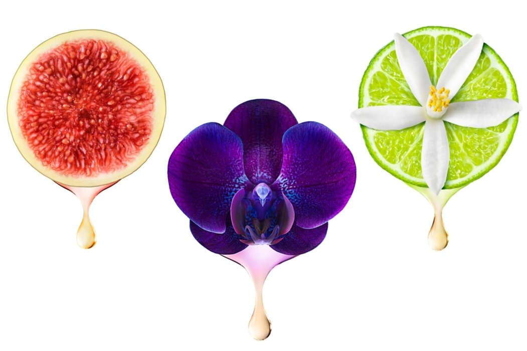 Drip of fruits and flowers