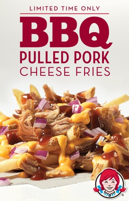BBQ pulled pork cheese fries
