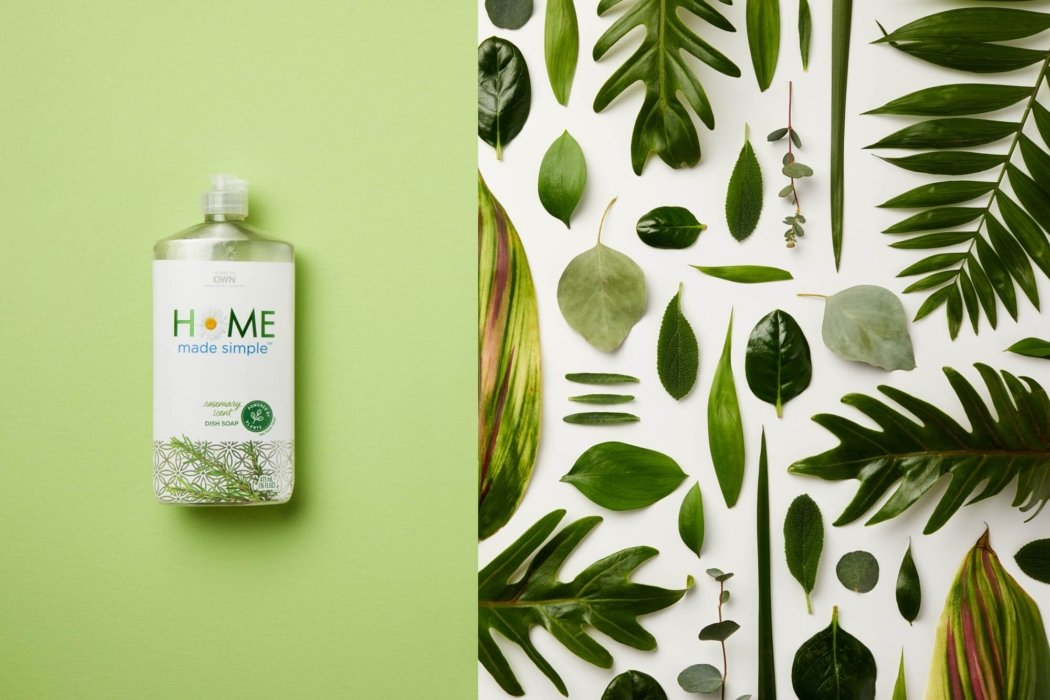 flat lay with plants and leaves - social media photography - product photography