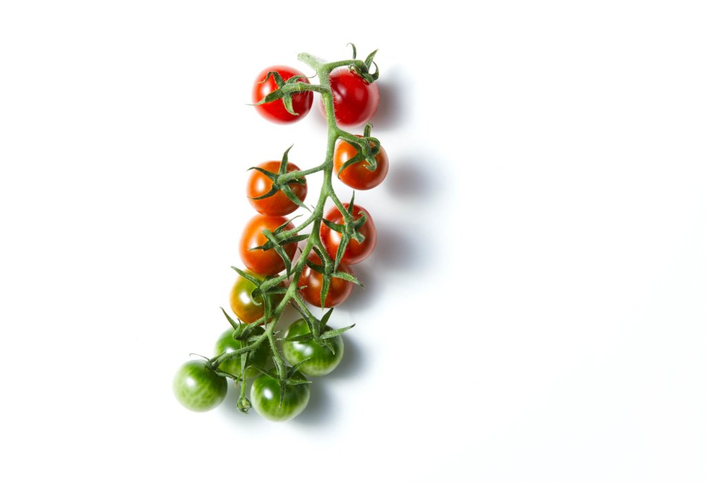 A small vine of Small vine ripe tomatoes on marble - Raw Food Photography