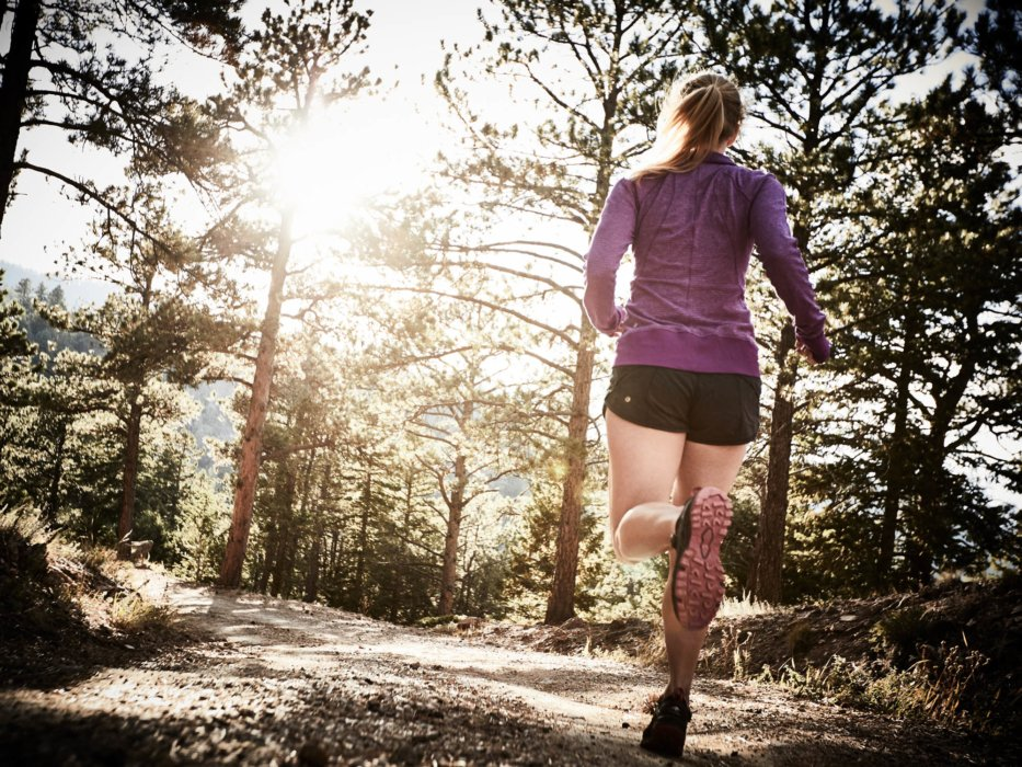 A hiker running through a pine mountain forest trail