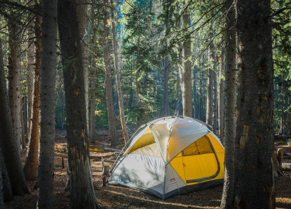 A camping tent in some woods