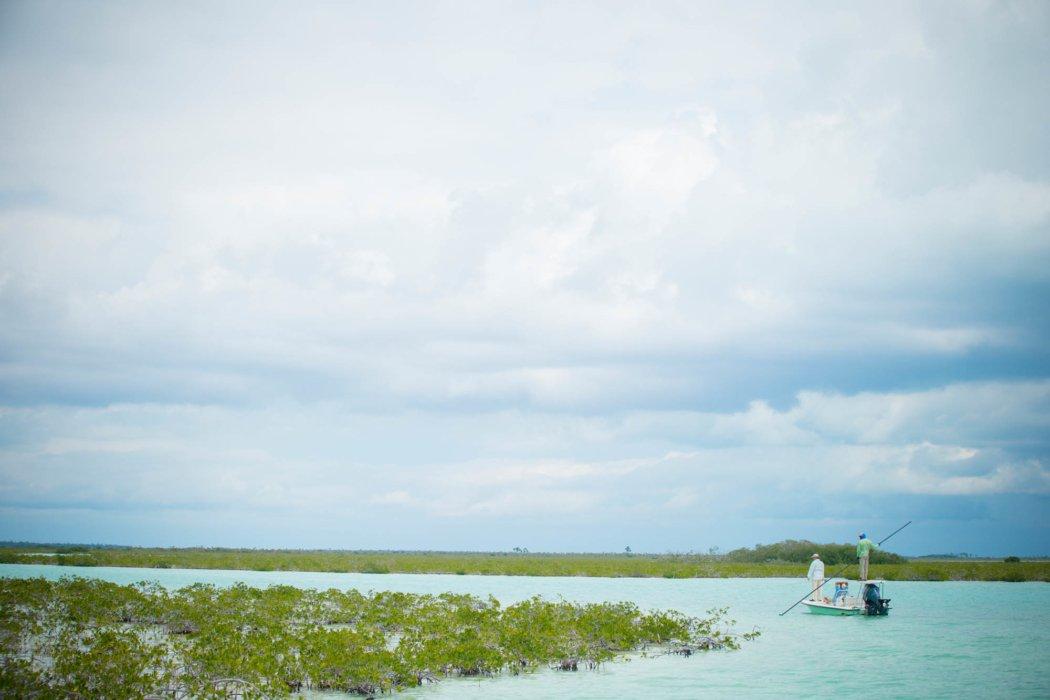 Two fisherman on a boat navigating brackish water