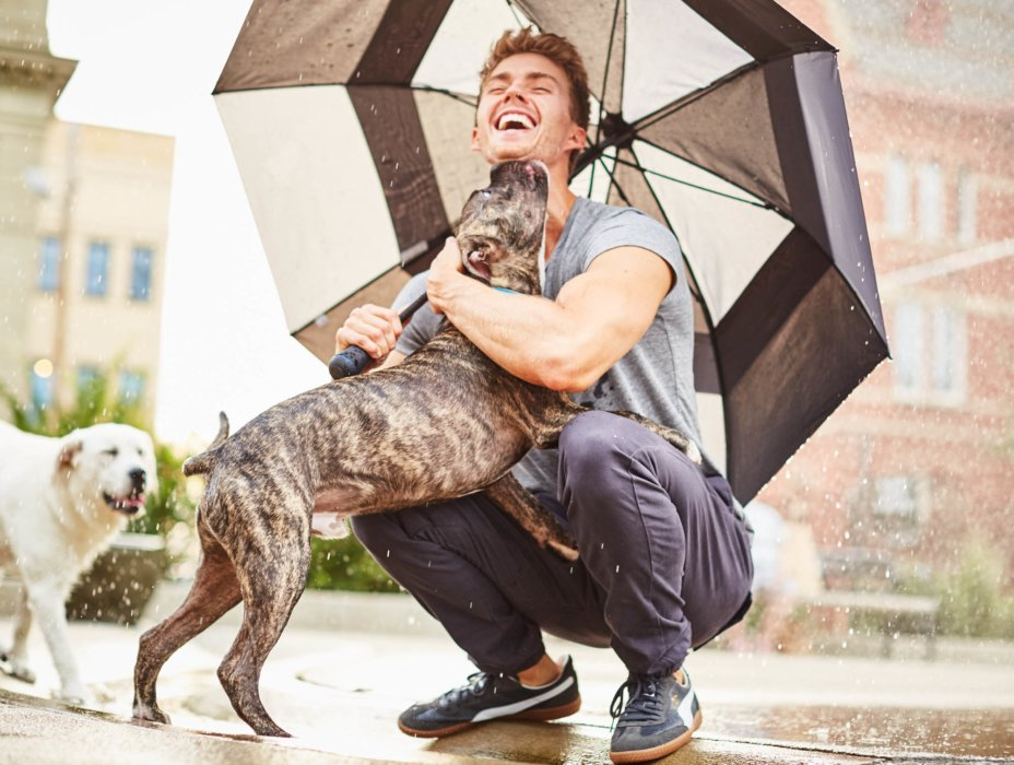 blond hair man with an umbrella raining getting licked by a brown dog