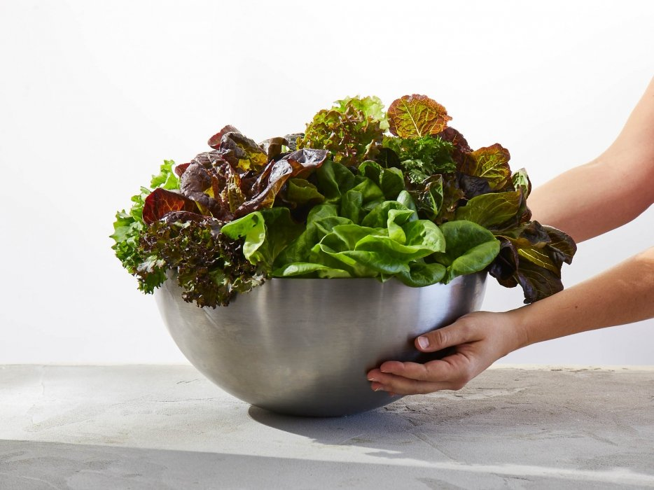 A bowl of raw and fresh salad greens - food photography