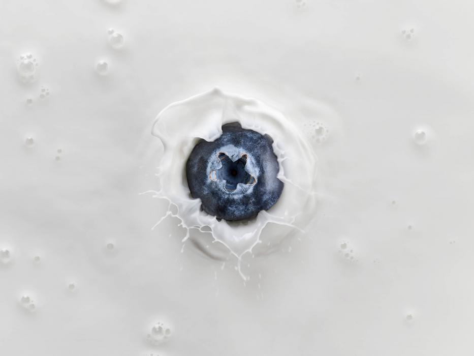 A blueberry splashing in milk - drink splash photography