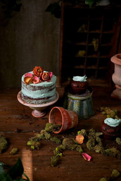 Food photography - Cake and cupcakes in artistic setting - earthy gardening art photography